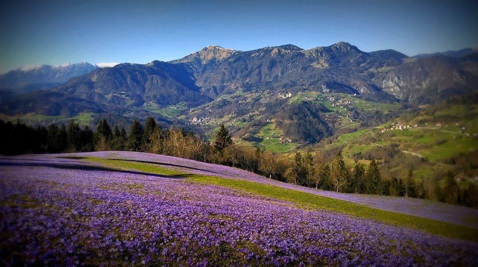 realestate slovenia natures paradise