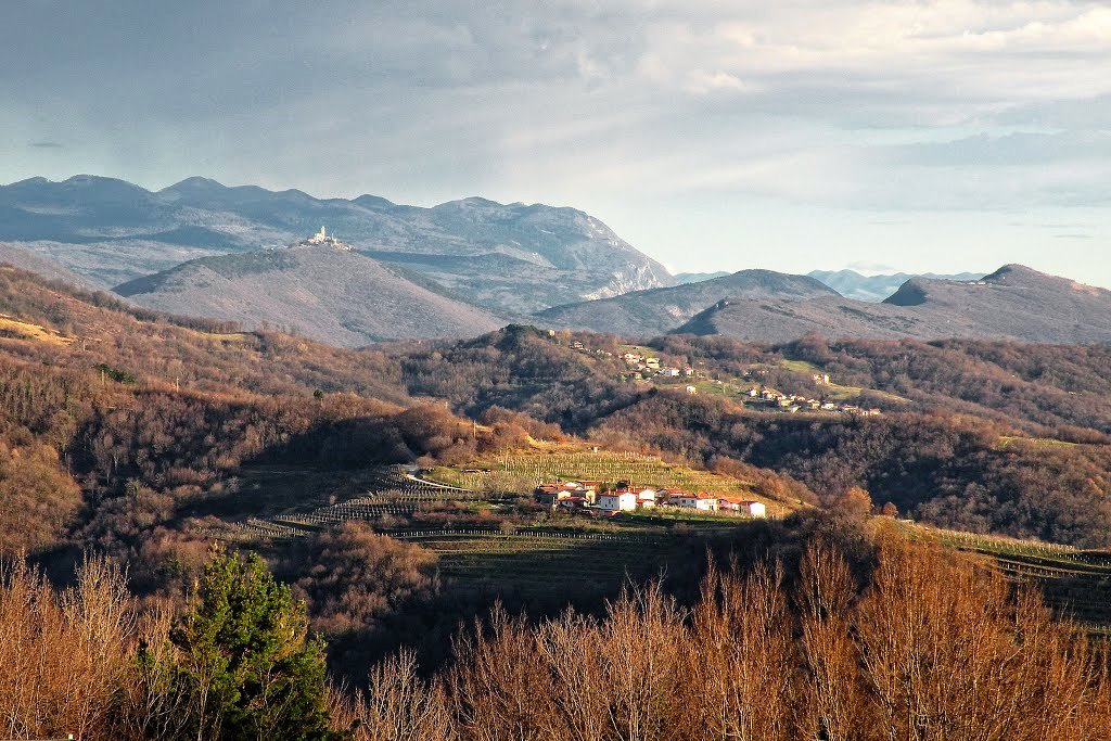 Vrhovlje pri Kožbani - bouwgrond te koop - Real Estate Slovenia - www.slovenievastgoed.nl