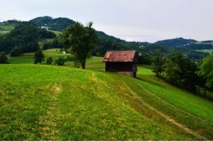 Farm estate for sale Mrcna Sela - Real Estate Slovenia - www.slovenievastgoed.nl