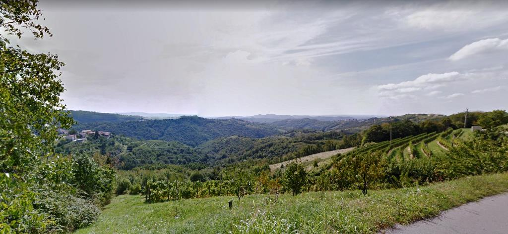 For sale large estate with construction land - Real Estate Slovenia - www.slovenievastgoed.nl