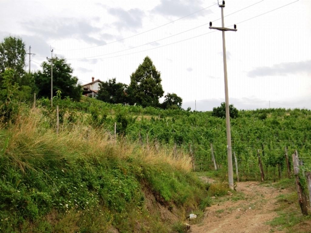 For sale wine farm estate Brdice pri Neblem Real Estate Slovenia - www.slovenievastgoed.nl